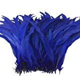 Sowder Royal Blue Rooster Coque Tail Feathers 13-16inch Lengh Pack of 50 (Color: Royal Blue)
