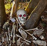 Skelett Gebeine Totenschädel mit Leuchtaugen, Sound und Bewegungsmelder 18 teiliges Horror Deko Schocker Set reagiert auf Bewegung und beginnt mit den Augen zu blinken und zu lachen wenn jemand den Weg des Knochenmonsters kreuzt Halloween Horror Deko Sens