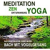 Meditation, Zen, Yoga und Entspannung mit Naturgeräuschen ohne Musik: Bach mit Vogelgesang