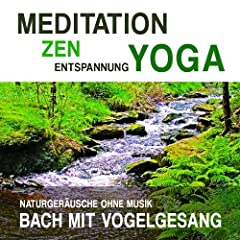 Meditation, Zen, Yoga und Entspannung mit Naturger�uschen ohne Musik: Bach mit Vogelgesang
