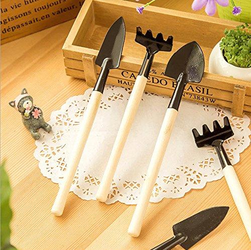 terreno-di-giardinaggio-utensile-di-lavoro-set-pot-flower-gardening-pala-rastrello-vanga-trascorso-t
