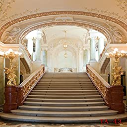 Ouyida 10X10FT Castle stairs Pictorial cloth Customized photography Backdrop Background studio prop TA43