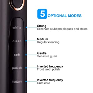 Sonic Electric Toothbrush Clean as Dentist Rechargeable 1 Time Charge 30 Days Use 5 Modes Waterproof 3 Replacement Heads with Smart Timer Black (Color: Black, Tamaño: new)