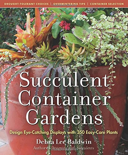 Succulent Container Gardens: Design Eye-Catching Displays with 350 Easy-Care Plants (Succulent Baskets compare prices)