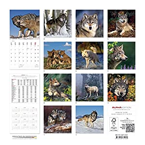 Alpha Edition 16.0108 Lupi Calendario da Muro 2016, 30 X 60 cm Aperto