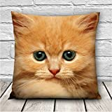 3D Cute Expressions Cat Throw Pillow Case Sofa Office Car Cushion Cover Gift