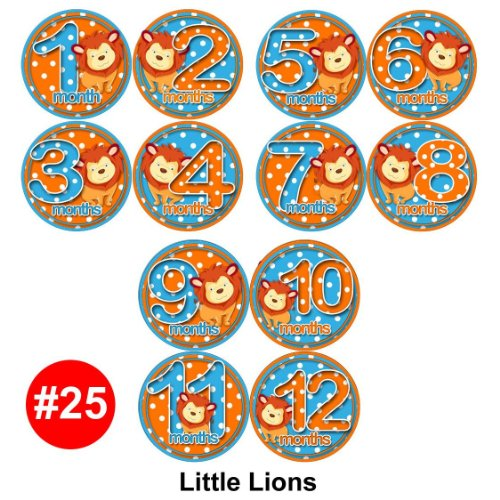 LIONS Baby Month Onesie Stickers Baby Shower Gift Photo Shower Stickers, baby shower gift by OnesieStickers - 1