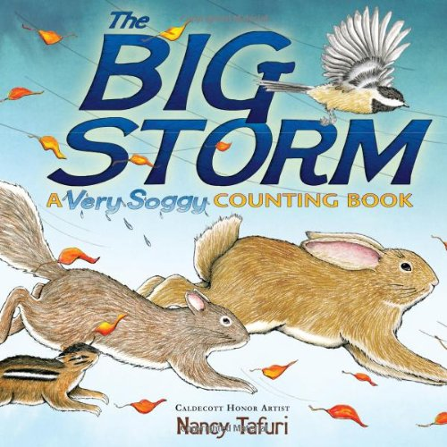 The Big Storm: A Very Soggy Counting Book, Nancy Tafuri