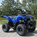 Kids Electric Quad S-8 Farmer 1000 Watt Miniquad Blue