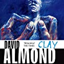 Clay Audiobook by David Almond Narrated by Stephen Tompkinson