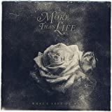 What's Left Of Me [VINYL] More Than Life