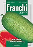 Obstsamen - Wassermelone Charleston Gray von Franchi Sementi