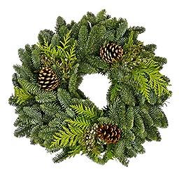 Benchmark Bouquets - Fresh Holiday Wreath (16 inch)