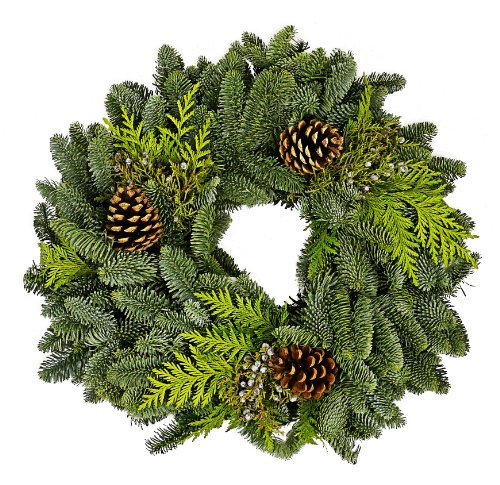 benchmark-bouquets-fresh-holiday-wreath-16-inch