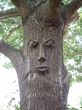 Simon Tree Face