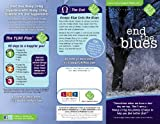 img - for End the Blues (20 Pack) (YL 90 Day Plan) book / textbook / text book