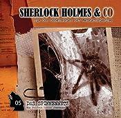 Das Spinnennetz (Sherlock Holmes & Co 5) | Marc John