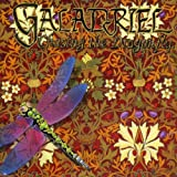 Chasing The Dragonfly by GALADRIEL (2001-01-01)