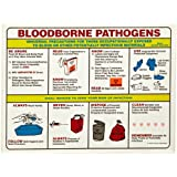 "Brady PS125E 18"" Height, 24"" Width, Laminated Paper, Black, Red, Blue, Yellow On White Color Prinzing Biohazard Safety Poster, Legend ""Bloodborne Pathogens Universal Precautions For Those"""