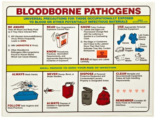 """Brady Ps125E 18"""" Height, 24"""" Width, Laminated Paper, Black, Red, Blue, Yellow On White Color Prinzing Biohazard Safety Poster, Legend """"Bloodborne Pathogens Universal Precautions For Those"""""""