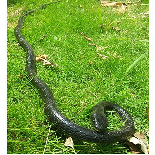 rubber-lifelike-snakes-scary-gag-gift-incredible-creatures-chain-snakes-50-rain-forest-snake-toys-wi