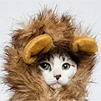 Nicrew Cat Costume Lion Mane Wig, Hat for Cats