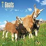 Goats 2016 Square 12x12 Wall Calendar