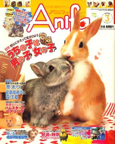 Anifa (アニファ) 2008年 03月号 [雑誌]