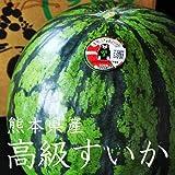 【産地直送】 熊本県産 高級すいか 糖度が高く、甘くてみずみずしい美味しいすいかです。 (1玉入り(1玉当たり約5kg?6kg) )