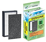 GermGuardian FLT4100 GENUINE HEPA Replacement Filter E for AC4100 Air Purifier