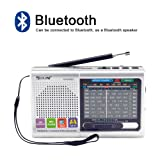 FM/AM/SW (1-7) 9-Wave Band Smart-US Rechargeable Portable Professional Radio That can be Used as MP3 and Speakers by Connecting Bluetooth, USB Sticks and Memory Cards (Silver) (Color: Silver)