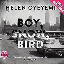 Boy, Snow, Bird (       UNABRIDGED) by Helen Oyeyemi Narrated by Barbara Barnes