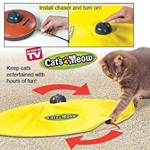 Msun pet cat 39 s meow undercover mouse toy panic mouse as for Best motorized cat toys