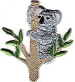 KOALA ON BRANCH - IRON ON EMBROIDERED PATCH - ANIMALS - AUSTRALIA - ZOO