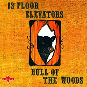 bull of the woods the 13th floor elevators