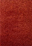 ON SALE! ~5 ft. X 7 ft. 2 Tone Red Area Rug, Harmony Collection ON SALE!