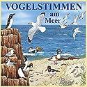 Vogelstimmen am Meer: Mit gesprochenen Erläuterungen Hörbuch von Karl Heinz Dingler, Andreas Schulze Gesprochen von:  div.