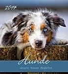 Hunde 2017 - Postkartenkalender - (15...