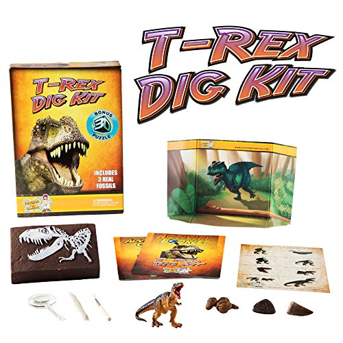 T-Rex Dinosaur Dig Kit -Excavate 3 Real Dino Fossils!