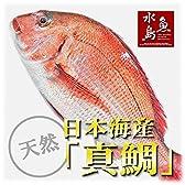 魚水島 天然真鯛 マダイ 桜鯛 日本海産 2.0~2.4キロ物