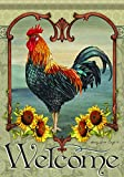 Carson Home Accents Outdoor Flag, Rustic Rooster, Large