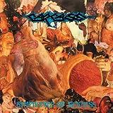 Symphonies Of Sickness [Explicit]