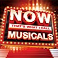 NOW That's What I Call Musicals (2014)