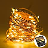 LED String Lights -100 Leds, 33 ft, Warm White Outdoor Decor Lighting for Christmas, Birthday Parties, Wedding and more - Hang on Furniture, Party Tent or in Threes - Water-Proof 12 Months Warranty