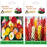Alkarty Poppy Californian Mixed And Antrrhinum Seeds Pack Of 20 (Winter)