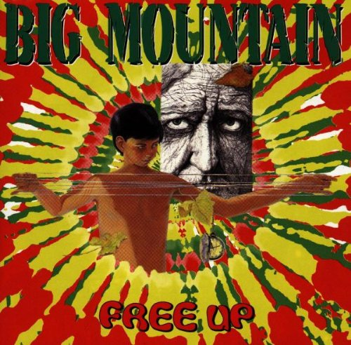 Big Mountain - Free Up - Zortam Music