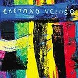 echange, troc Caetano Veloso - Livro