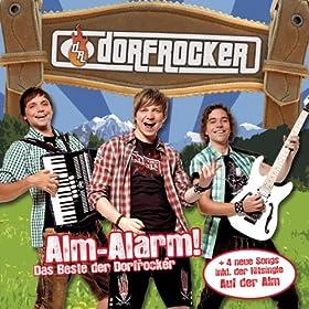 Alm-Alarm