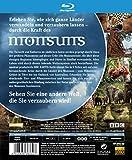 Image de Magie des Monsuns - Wunderbares Asien (2 Discs) [Import allemand]