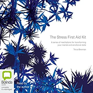 The Stress First Aid Kit Audiobook